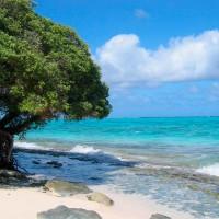 Марианские острова. О. Сайпан. Горячие туры!