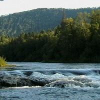 Рыболовный тур на р.Арму