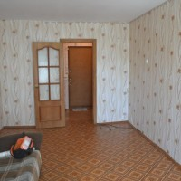 Однокомнатная квартира, 24 кв.м (Кирова 152)